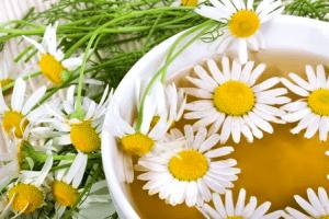 Как ромашкой лечить цистит: подмывание и спринцевание