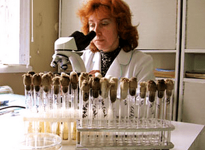 биологические материалы берут на анализ