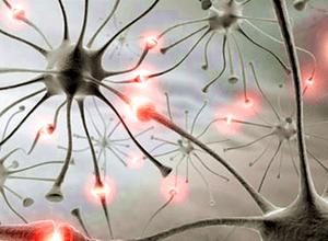 способности клеток слизистой к восстановлению
